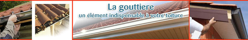 rénovation gouttieres